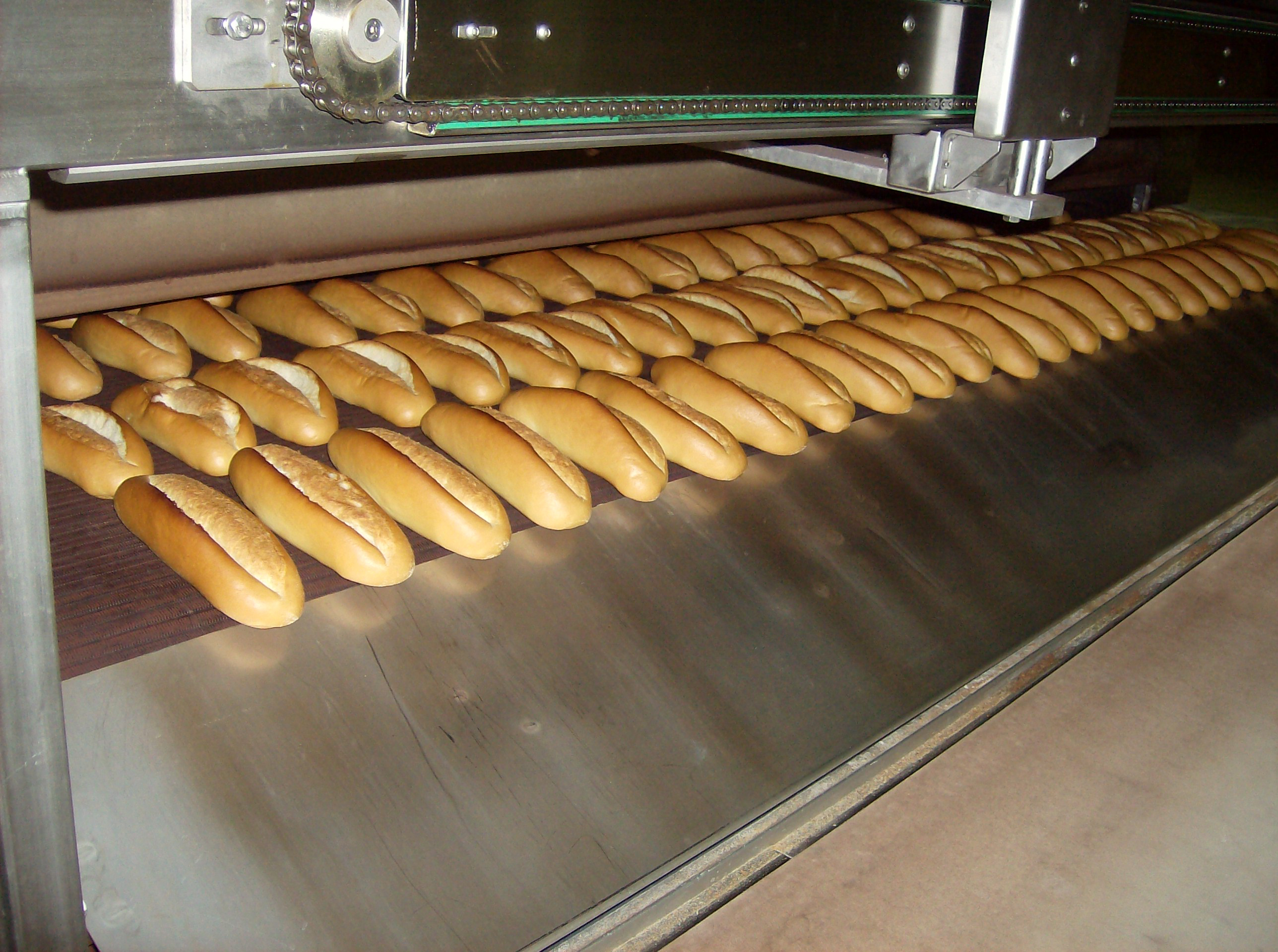 Bread Rolls 2 Cyclothermic Oven