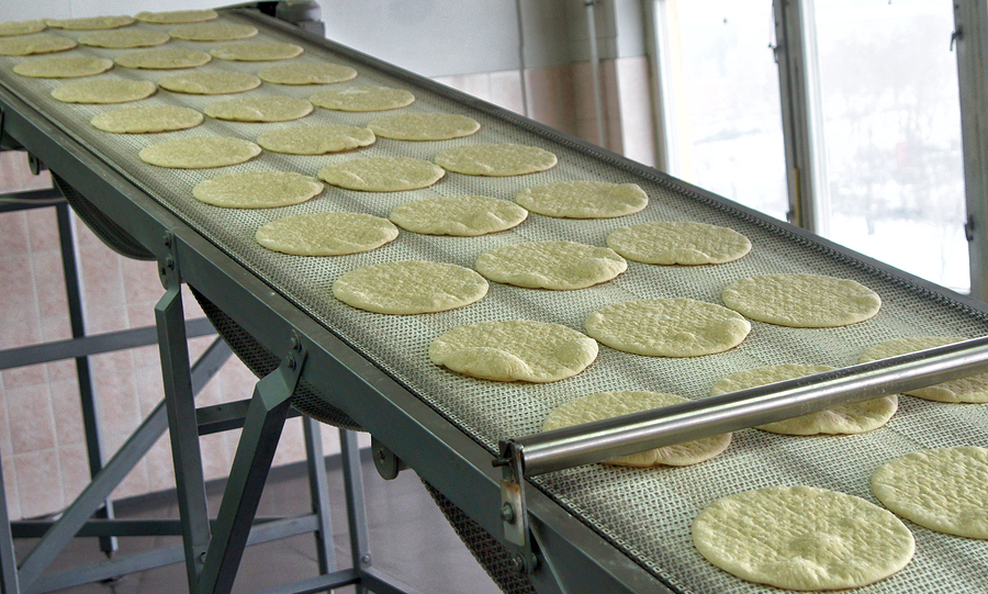 Conveyor with dough, billets for pizza.
